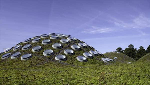 Extenzivna zelena strecha