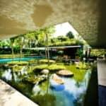 Centrálna časť s vodnou plochou, Cluny House, Guz Architects
