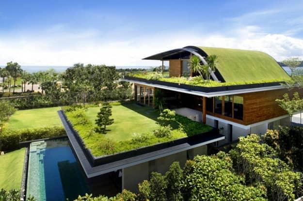 zelena strecha profil